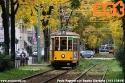 Ogni anno in autunno la natura si ripete entrando in simbiosi con i nostri beneamati tram. (14-11-'19)