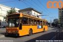 Ultimi servizi per i filobus Socimi. (20-04-'19)