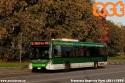 Iveco Urbanway 6265 ripreso in transito in un'autunnale via Parri. (08-11-'20)